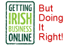 Getting Irish Business Online V's A ProperWebsite