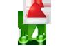 Christmas Song Lyrics &Chords