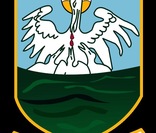Crest Logo Rebuild for AnnaduffGAA