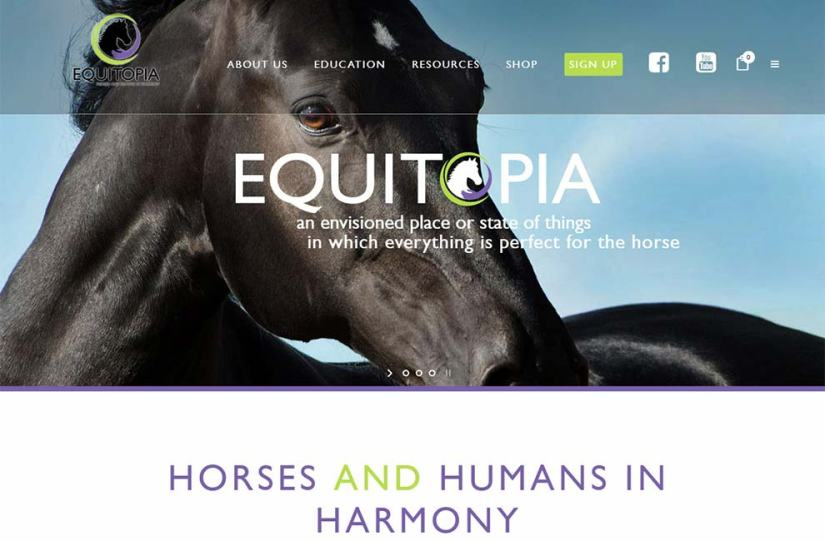 Equitopia Center Upgrade